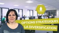 Les principales options stratégiques des entreprises : la diversification